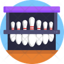 Bowling Skittles Skittle Icon