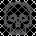 Skull Halloween Horror Icon