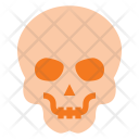Skull Skeleton People Icon