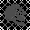 Skull Skeleton Scary Icon