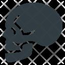 Skull Death Head Icon