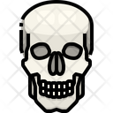 Skull Organ Body Part Icon