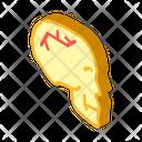 Skull Fracture Isometric Icon