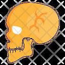 Head Fracture Skull Fracture Cranium Icon