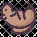 Groundhog Day Sleeping Groundhog Sleep Icon