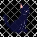 Sleepy Black Cat Cat Kitten Icon
