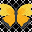 Sleepy Orange Insect Icon