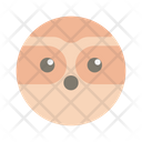 Sloth Wildlife Animal Icon