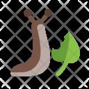 Slug Eating Animal Icon