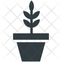 Small Plant Nature Icon