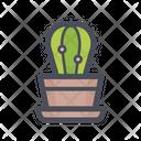 Cactus Small Cactus Ornamental Plants Icon