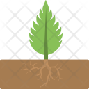 Growing Plant Small Icon
