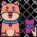 Smart Collar Collar Pet Icon