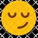 Smile Happy Man Icon