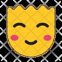 Smiley Expression Emotion Icon