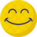 Smiling Laughing Emoticons Icon
