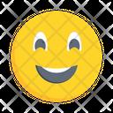 Smiling Emoticon Joy Icon