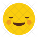 Eyes Face Smiling Icon
