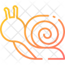 Snail Insect Animal Icon