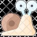 Spring Snail Animal Icon