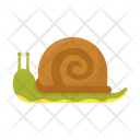 Snail Animal Insect Icon