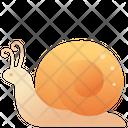Creature Animal Snail Icon
