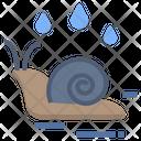 Snail Wet Moisture Icon