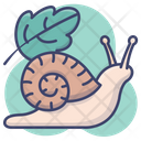 Insect Shell Slow Icon
