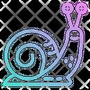 Snail Animal Kingdom Icon