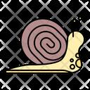 Snail Animal Pest Icon