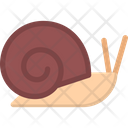 Snail Shell Insect Icon