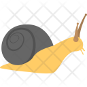Snail Animal Mollusk Icon