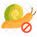 Snail Control Crab Shell Icon