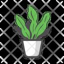 Snake Plant Garden Icon