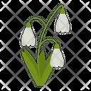Wildflowers Flowers Plant Icon