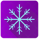 Snowflake Winter Frost Icon