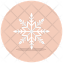 Snowflake Ice Flake Crystal Snowflake Icon
