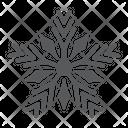 Snowflake Merry Christmas Icon