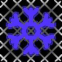 Winter Snowflake Snow Icon