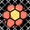 Hexagonal Snowflake Icon