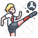 Isoccer Soccer Football Icon