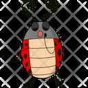 Sock Ladybug Icon