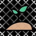 Soil Plant Park Icon