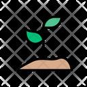 Soil Plant Nature Icon