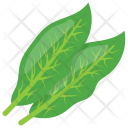 Sorrel Green Leaves Icon