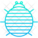 Sow bug Icon