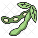 Soybean Agriculture Soy Icon
