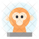 Monkey Space Suit Icon