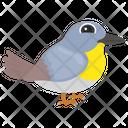 Sparrow Bird Pet Bird Icon