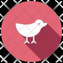 Sparrow Bird Dove Icon